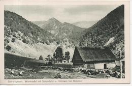 CPA - SUD VOGESEN - WORMSATAL MIT SPITZKOPFE U HOHNECK BEI METZERAL  - T. B. E. - Autres Communes