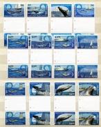 """Cook - Inseln - Aitutaki - Mi.Nr. 877 / 888 Zwischensteg / Gutter-Pair - """"Wale"""" ** / MNH (aus Dem Jahr 2013) - Aitutaki"""