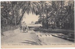 Tozeur (Djerid) - Dans L'Oasis - (94. - ND Phot. - T.Disegni, Hotel Bellevue)  - (Tunesie) - Tunesië