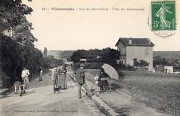 VILLEMONBLE RUE DU BOIS-CHATEL VILLA DES MARRONNIERS (ARTISTE PEINTRE) - Villemomble