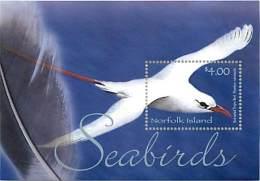 NORFOLK ISLAND -  SEABIRDS - VOGEL - UCCELLI - OISEAUX -  RED-TAILED TROPIC BIRD - Ile Norfolk