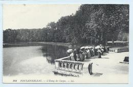 DC 249 - Fontainebleau - L'Etang Aux Carpes - LL 392 - Fontainebleau