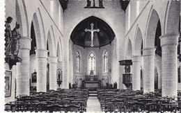 Hannut - L'Eglise Primaire, Vue Intérieure (Photothill) - Hannut