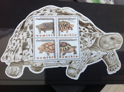 Namibië / Namibia - Postfris / MNH - Sheet Schildpadden 2016 NEW! - Namibië (1990- ...)