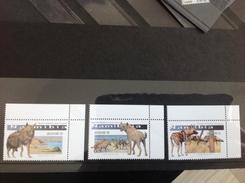 Namibië / Namibia - Postfris / MNH - Complete Set Wilde Honden 2016 NEW! - Namibië (1990- ...)