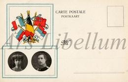 Postcard / ROYALTY / Belgium / Belgique / Roi Albert I / Koning Albert I / Koningin Elisabeth / Reine Elisabeth - Patriotiques