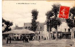 Vallière. La Halle. - France