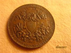 Suisse: Médaille Commémoration Du Centenaire De L'indépendance Du Canton De Vaud - Non Classés