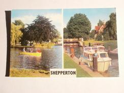 Postcard Multiview Shepperton Surrey  My Ref B1338 - Surrey