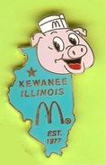 Pin Mac Do McDonald's Kewanee Illinois Turquoise Cochon - 3R14 - McDonald's