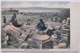 Capernaum, Capharnaüm (Palestine), Les Ruines. - Palestine