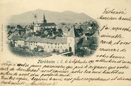 CPA - TURCKHEIM - (ALSACE - ELSASS) - VUE SUR LA VILLE - Turckheim