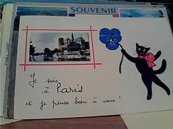 FRANCE PARIS  ILLUSTRATA RENE CAT GATTO MICIO CHAT NOIRE  E FIORE JE SUI A PARIS VB1957 FX10367 - Andere