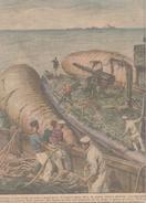 Navi Navir Ships Recuper Flotta Germanica 1924 Beltrame Illustratore - Books, Magazines, Comics