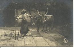 """BARCELOS - Nº 14 - JUNTA DE BOIS (Foto Alvão - Ed. """"cavalo Marinho"""")) - Braga"""
