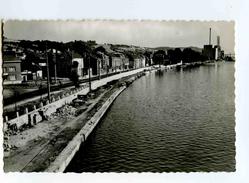 C 19042  -  Engis  -  Rue J. Wauters  -  Photo Véritable - Engis