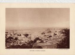 SAVANE A BAFILO, TOGO,  Planche Densité = 200g, Format: 20 X 29 Cm, (Agence Togo-Cameroun) - Historical Documents