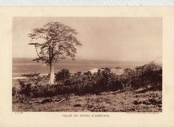 VALLEE DU NYONG, CAMEROUN,  Planche Densité = 200g, Format: 20 X 29 Cm, (Agence Economique Togo-Cameroun) - Documents Historiques