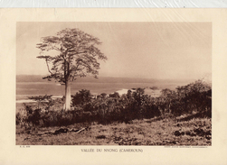 VALLEE DU NYONG, CAMEROUN,  Planche Densité = 200g, Format: 20 X 29 Cm, (Agence Economique Togo-Cameroun) - Historical Documents