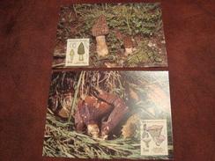 Lot De 2 Cartes Champignons Premier Jour 5 Septembre 1987 C ROUZEAU - Paddestoelen