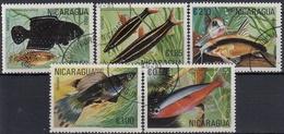 NICARAGUA 1981 PECES USADO - Poissons