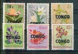 Flore - Fleurs - CONGO - Protéa, Véliozia, Schizoglossum, Ansellia, Thgonningia, Silène - 1960 - République Du Congo (1960-64)