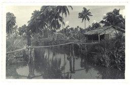 Cpa Carte-photo Cochinchine - Environs De Saïgon - Viêt-Nam