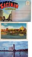 6- SAGINAW, Michigan, USA, Postcards, Souvenir Folder - Etats-Unis