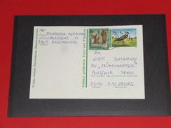 Kiebitz Vogel Bird 1996 Österreich Austria Ganzsache Postal Stationery Vögel Birds 3363 Hausmenning - Stamped Stationery