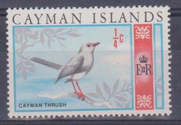 Cayman Island - Uccelli (nuovo) - Cayman (Isole)