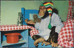 Oude Postkaart Aap Mokey Singe Chimpansee Nachttopf Chamber Pot De Chambre Piss Pispot - Monos