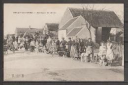 45  ATTELAGE  DE  CHIEN  -   SULLY  SUR  LOIRE  :  ATTELAGES  DE  CHIENS     .  (  2  SCANS R° V°  ) . - Sully Sur Loire