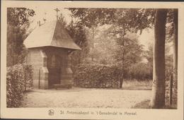 Meersel Dreef Hoogstraten St. St Sint Antoniuskapel In 't Genadendal Kempen Heilige Antonius - Hoogstraten
