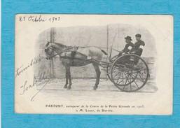 Blaye ( Gironde ). - Partout, Vainqueur De La Course De La Petite Gironde En 1903, à M. Labat, De Biarritz. - Blaye