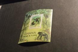 Td1539 -  Bloc MNh Ghana - 1982- Fauna And Flora - Chimpanzee