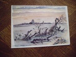 BELLE ILLUSTRATION ...AQUARELLE DE ROBERT LEPINE ...CAMARGUE - Saintes Maries De La Mer