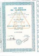 Action, Titre De 5000 Francs CFA Au Porteur Les Bois Du Cameroun - Afrique