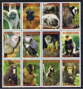 Surinam / Suriname 2006 Aap Apen Monkey Ape Affen Singe MNH - Apen