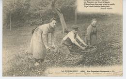 LA NORMANDIE - Nos Pommiers Normands - France