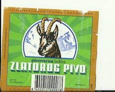 ZLATOROG PIVO  --  LABEL, ETIQUETTE  --  PIVOVARNA  LASKO,  SLOVENIA - Bier