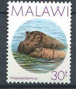 185 MALAWI 1987 - Yvert 499 - Hippopotame Mere Et Son Petit - Neuf ** (MNH) Sans Trace De Charniere - Malawi (1964-...)