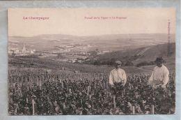CPA - En Champagne -  (51) - Travail De La Vigne - Le Rognage - France