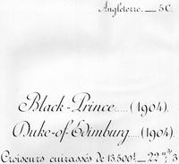 Livret De Marine De Guerre - ANGLETERRE - 5C - DUKE OF EDINBURGH - Vieux Papiers