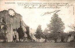 BLANCHEFOSSE RUINES DE L'ABBAYE DE BONNEFONTAINE  PRES RUMIGNY - Autres Communes