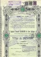 Società Per La Filatura Dei Cascami Di Seta Titolo Al Portatore  Cod.doc.253 - Agricoltura