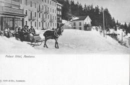 MONTANA → Palace Hôtel Mit Pferdeschlitten-Taxi, Ca.1920 - VS Wallis
