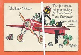 CHAT AVIATEUR  -  Illustrateur GEO - Gatti