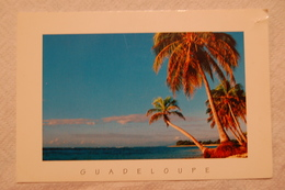 GUADELOUPE PLAGE ST FRANCOIS - Antilles