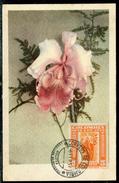 Colombie - Carte Maximum  1951 Fleur , Carte Voyagée Pour La Suisse - Colombie