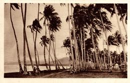 UN ORAGE SUR SAMOA - Samoa